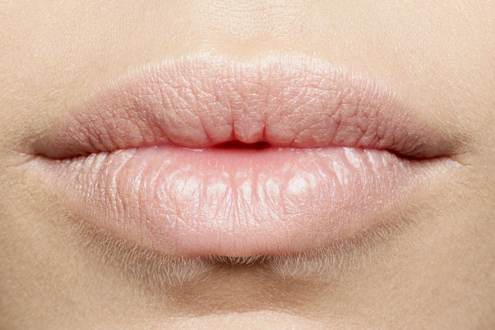 usne velike usne