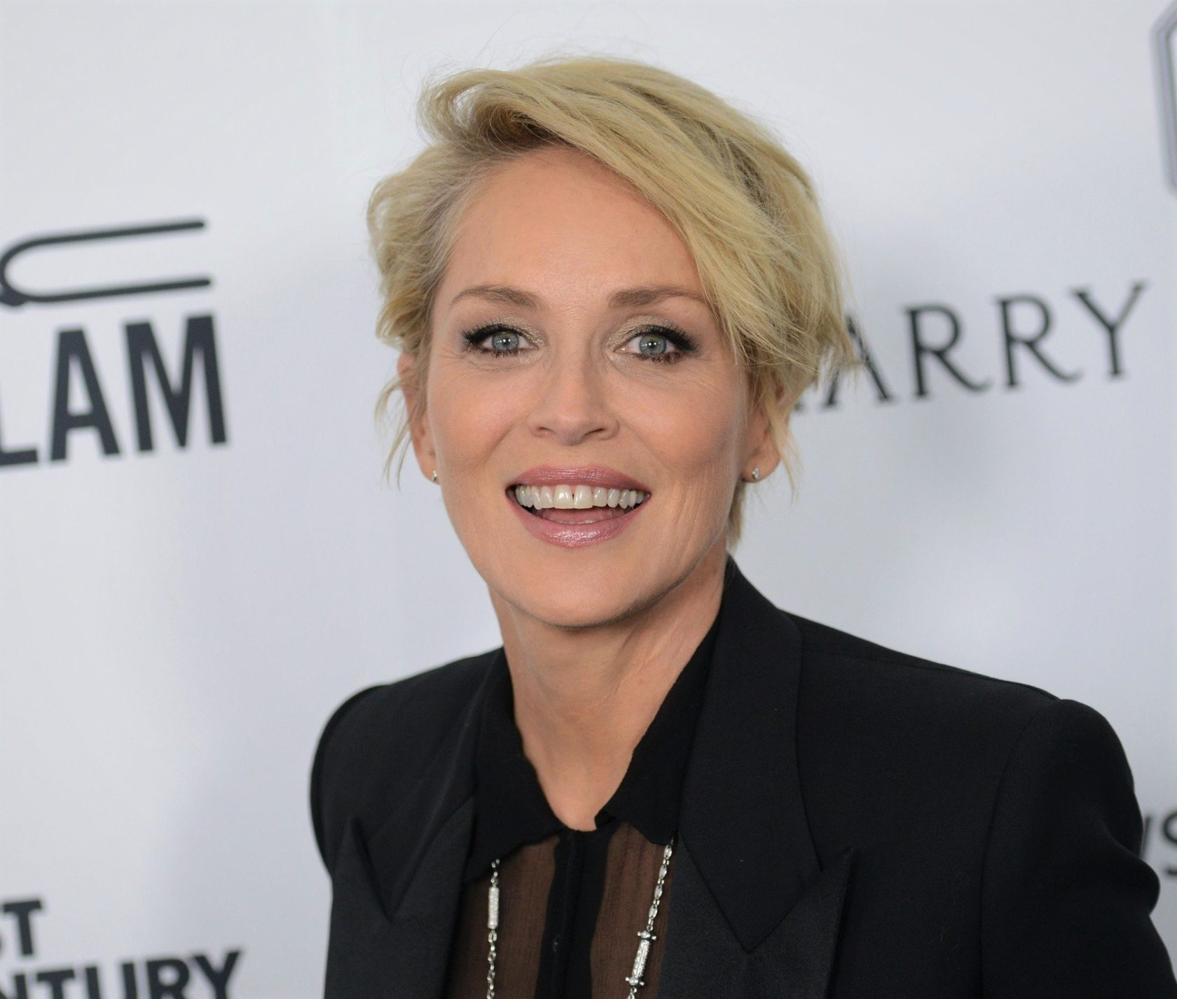 SHARON STONE @ the 2015 amFAR's Inspiration Gala held @ the Milk studios. October 29, 2015, Image: 264285284, License: Rights-managed, Restrictions: AMERICA, Model Release: no, Credit line: Profimedia, Visual